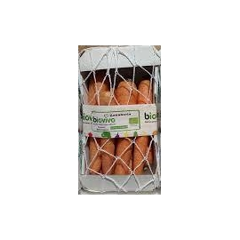 Bio Zanahoria
