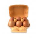 Huevos camperos 1/2 docena