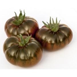 Tomate Iberiko